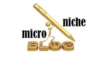 Belajar Meraup Dollar Dengan Micro Niche Site